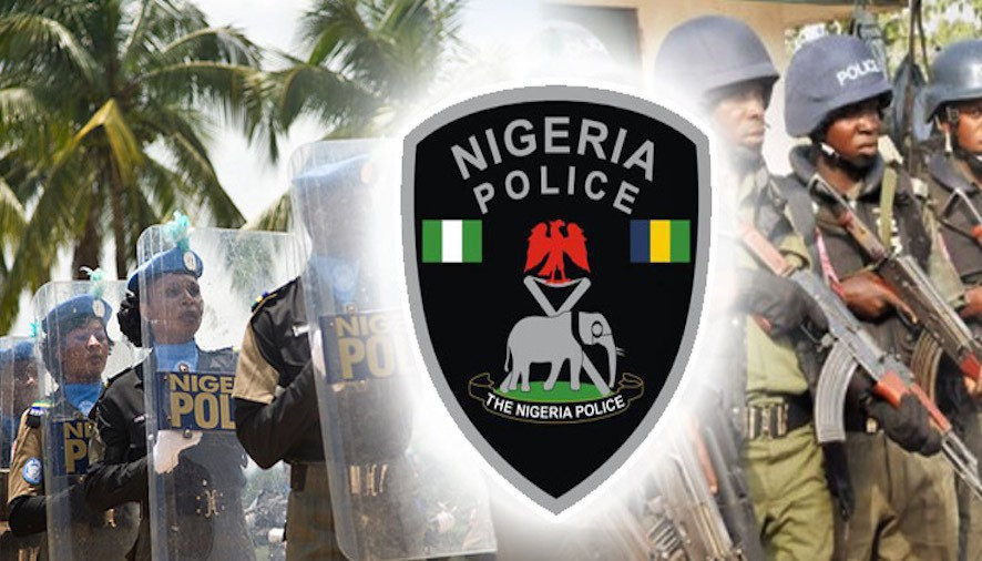 Fuel Price Hike: Police warns against protest in Borno